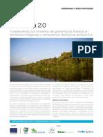 Amazonia 2.0 Nov2017