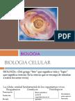 BIOLOGIA PROPEDEUTICO.pptx