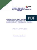 PERFIL DE COMPETENCIAS DE UNA RECEP. HT.pdf