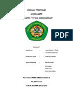 laporan kelompok 3
