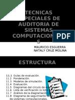 27766116-tecnicas-especiales-de-auditoria-de-sistemas-computacionales.pdf