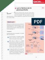Lysis of Plasmidian Cell