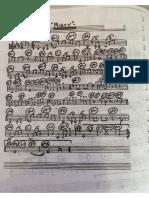 carpetaver19.pdf