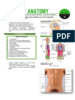 Abdominal Wall Edited Word