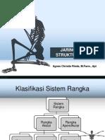Struktur Dan Jaringan Tulang