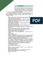 L 2013, Boraso a. Elementos Para El Estudio de Las Macroalgas de Argentina_Glossary
