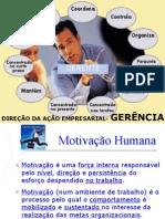 11-Direção da Ação Empresarial-Gerência e Supervisão