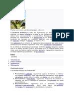 Factores bióticos.docx