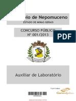 auxiliar_de_laborat_rio.pdf