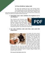 Tips Cara Membantu Proses Kelahiran Anjing Anda.docx