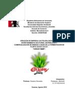 """Empresa de Servicios - Mercadotecnia II- CREACIÓN DE EMPRESA COCTELERA DEDICADA EL ENTRETENIMIENTO NOCTURNO, DISTRIBUCION Y COMERCIALIZACIÓN DE BEBIDAS A BASE DE LA FERMENTACIÓN DE PLANTA AGAVE COCUY.  """"COCUY BAR""""."""
