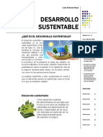 Lesly Esteban Rojas Desarrollo Sustentable