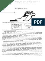 Lições de texto e literatura Platão e Fiorin (2006).pdf