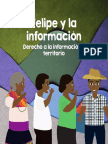 Felipe y la información