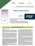 Diseño Curricular Orientacion Naturales28-03-12.pdf