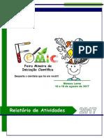 Relatório FEMIC 2017