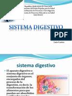 Sistema Digestivo55(1)