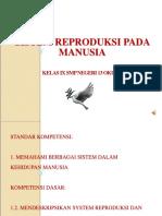 Sistem Reproduksi Manusia Fix