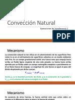 Cap1_ConveccionNatural_p16