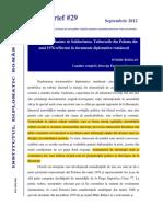 Policy Brief 29