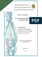 Practica de Fertirrigacion - Grupo b Arandano r