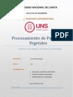 Informe-PASTAS.docx