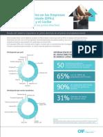 EPEs Factsheet CAF