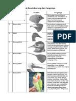 Bentuk Paruh Burung Dan Fungsinya