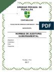 monografia normas de auditoria gubernamental.docx