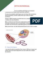 Adn Mitochondrial