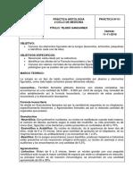 informe sanguineo.docx