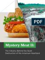 Meat-Pollution-in-America.pdf