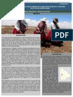 Bolivia Practica 6