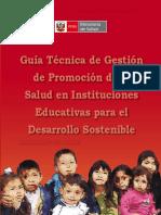 GuiaGPS_IIEE.pdf
