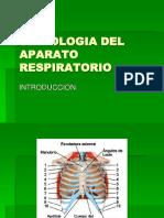 semiologia-del-aparato-respiratorio.ppt