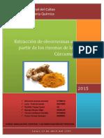 265440378-Extraccion-de-Aceite-Escencial-a-Partir-de-La-Curcuma.docx