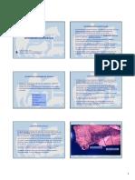 Clostridiosis.pdf