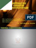 Capitulo VIII Constitucional