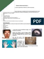 14 e 15 -Sistema Osteomioarticular I e II (1)