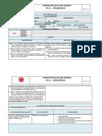 PCA PRIMEROS.docx