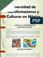Diversidad de Manifestacines y Cultura en Mexico