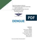 Cadena Del Dengue Caso Preventiva