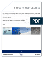 Seven Habits of True Project Leaders v8