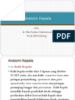 Anatomi Kepala A