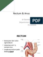 Rectum & Anus