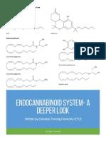 Endocannabinoid System a Deeper Look