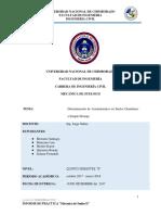 Informe de Suelos Asentamientos