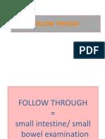 Follow Trough