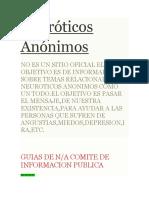 Neuróticos Anónimos en Linea y Su Ip