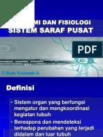 Anatomi Dan Fisiologi Sistem Saraf
